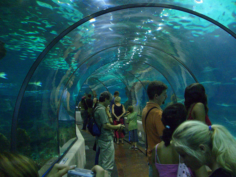 Aquarium barcelona gu a de barcelona for Aquarium de barcelona